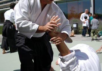 martial-arts-116543_640-360x250.jpg